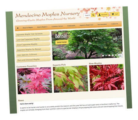 Mendocino Maples Nursery